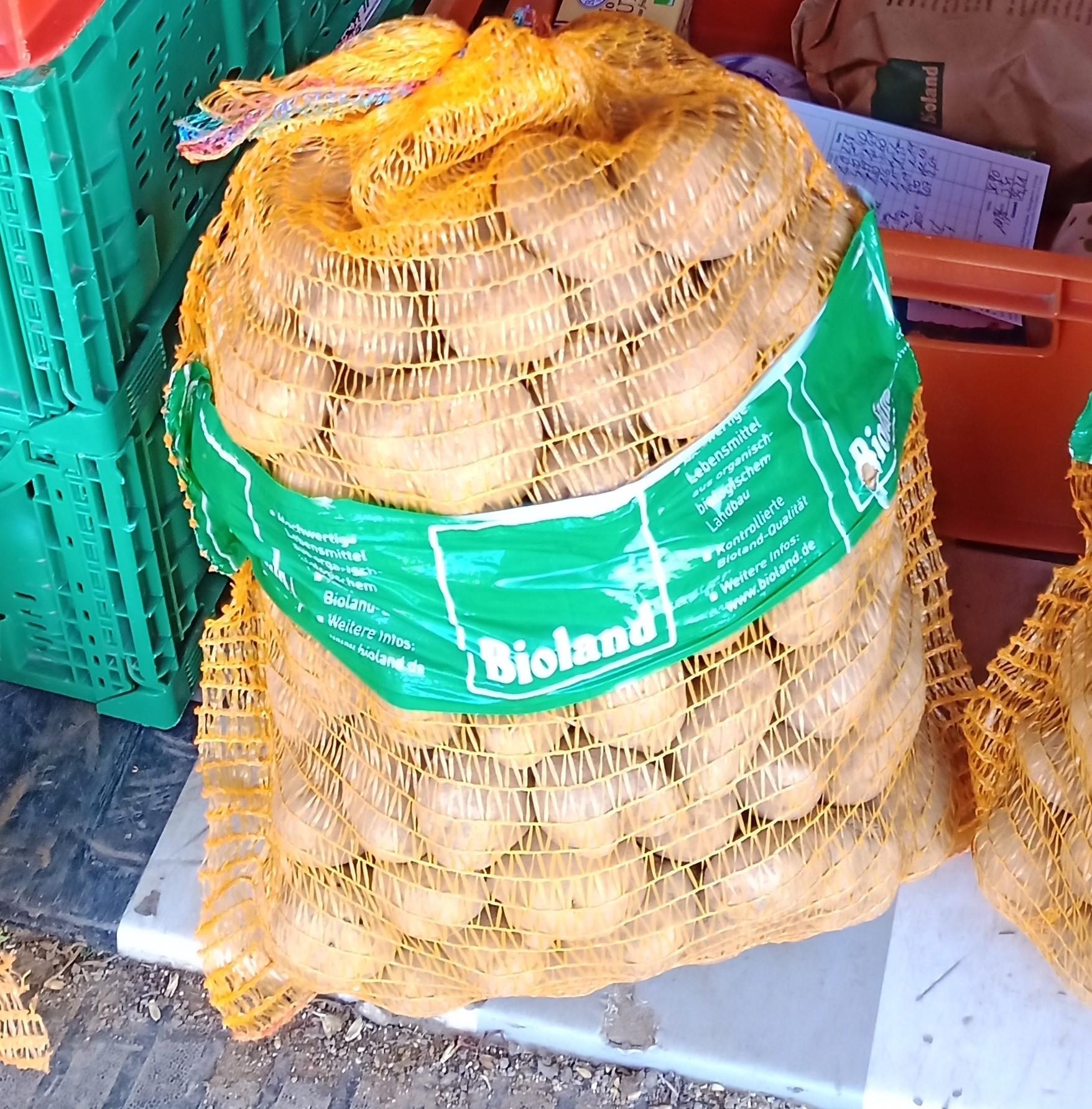 Bio Kartoffeln LINDA  12.5kg, festkochend